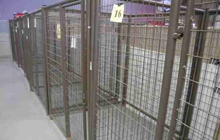 dog kennels salt lake city